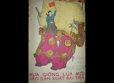 En 1954, à Diên Biên Phu, la révolution vietnamienne inflige une défaite historique à l'impérialisme français